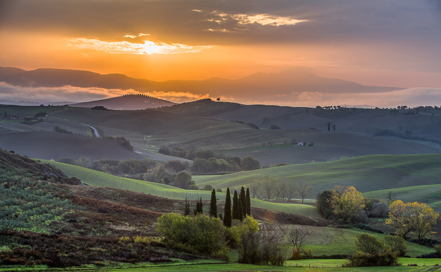 Photograph Morning Sun in Tuscany. by Hans Kruse on 500px