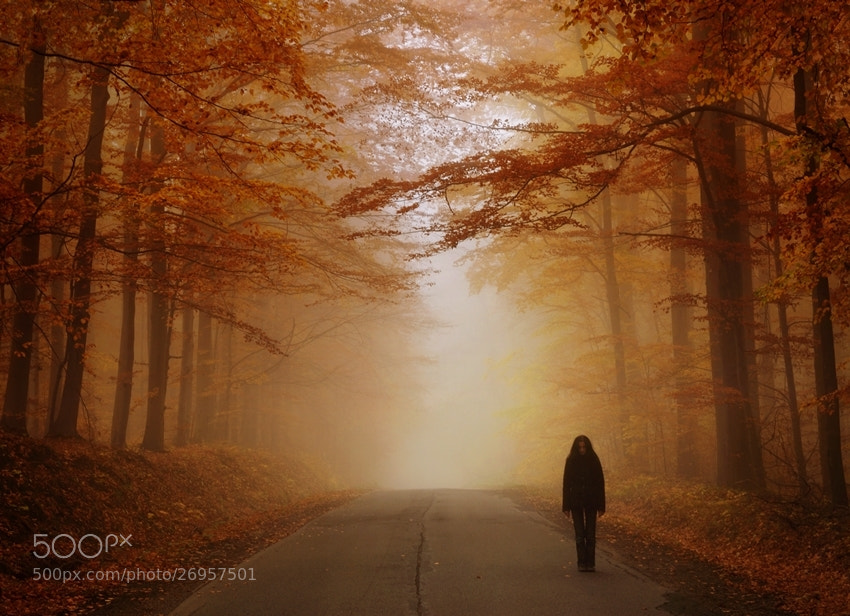 Photograph trail of ghosts by Sebastian Luczywo on 500px