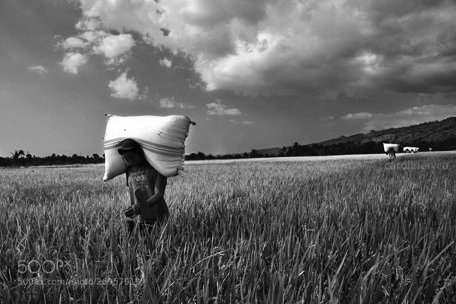 Photograph The Burden by Caroline Ryca on 500px