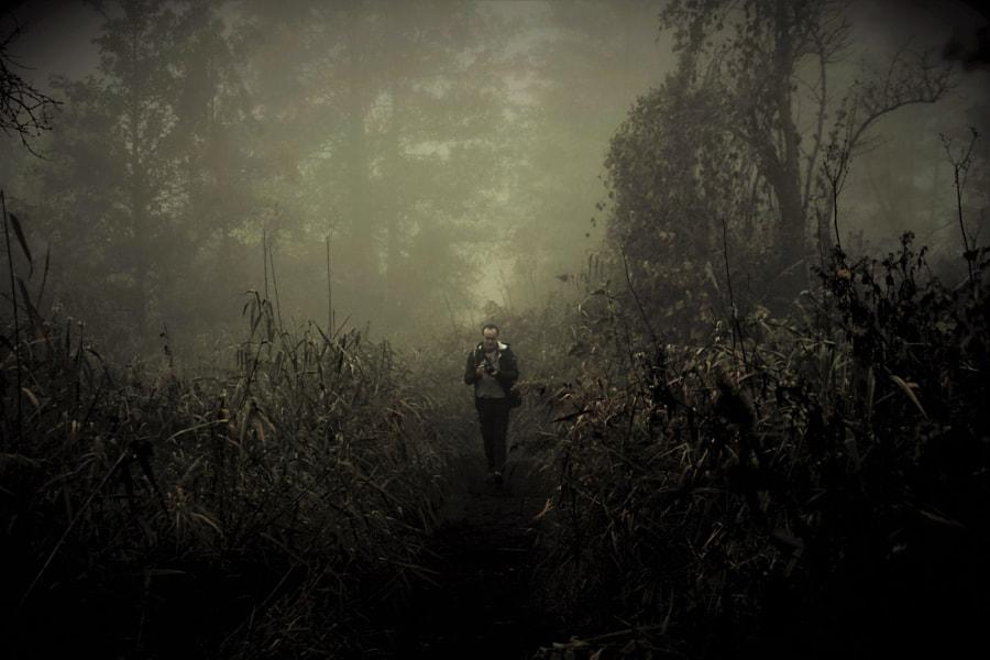 on the trail through the mist, автор — moonsun  на 500px.com
