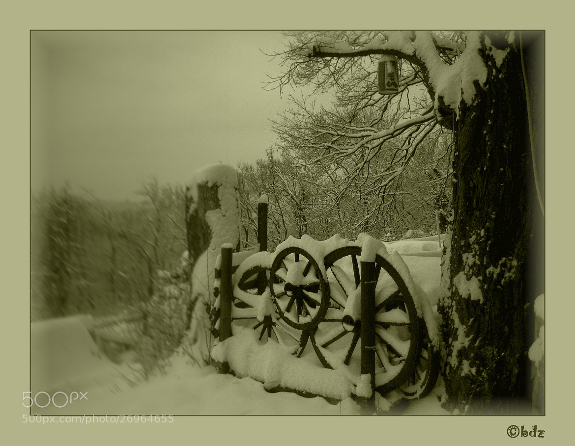 Photograph wheels of winter ... by Betty Ditscheid on 500px