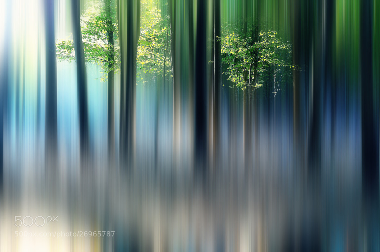 Photograph shine by Sho Shibata on 500px