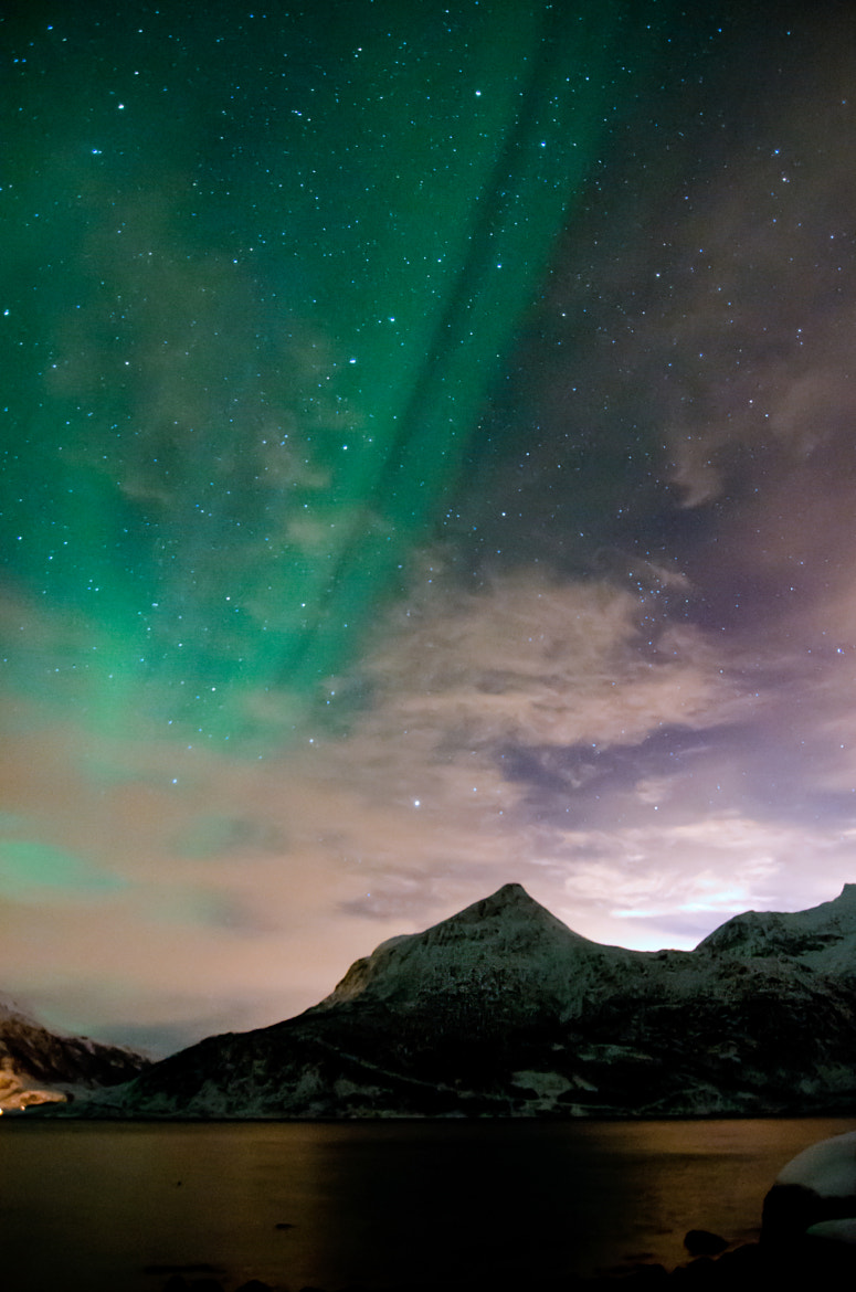 Photograph Borealis by Jane Chuah on 500px