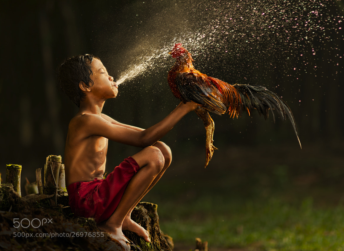 Photograph shower for my rooster  by Alex Hanoko on 500px