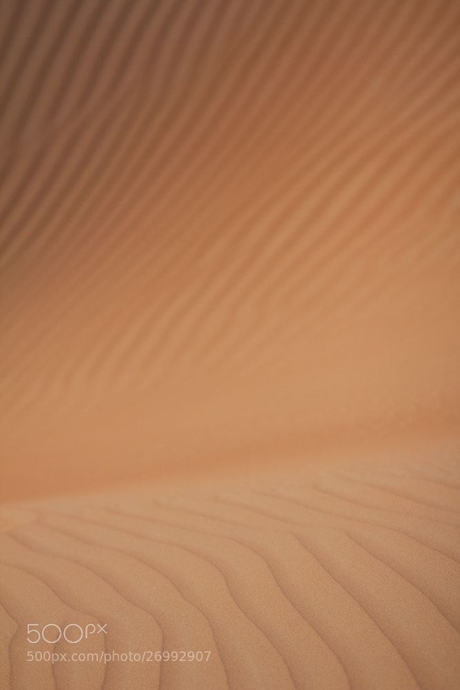 Photograph Wave... in the desert by Gwiyun Park on 500px