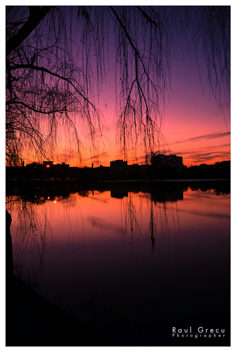 Photograph Purple Sunset by Raul Grecu on 500px