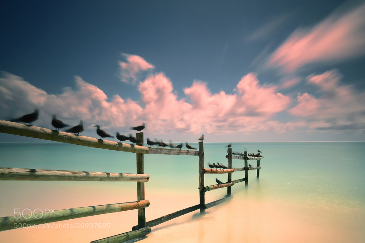 Photograph Back from Ile aux cocos by Fred Melot on 500px