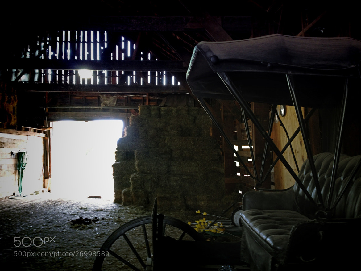 Photograph Buggy by soie414 on 500px
