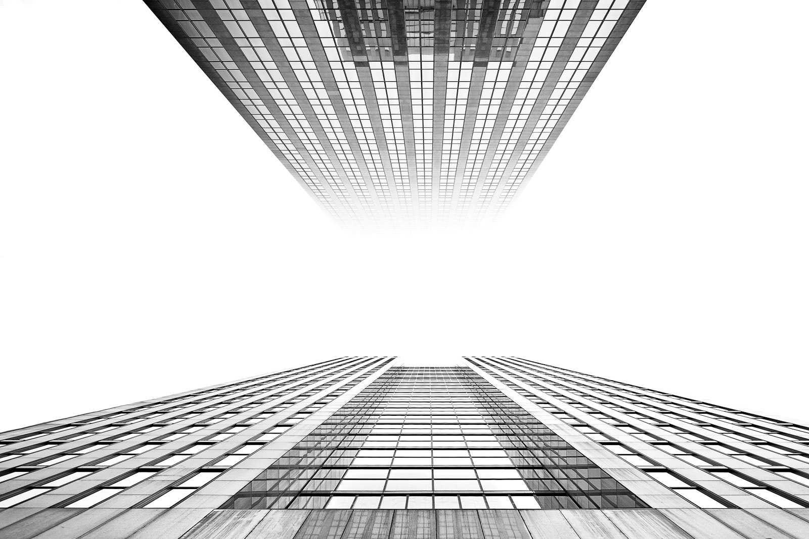Photograph Looking up by Bastian Sander on 500px