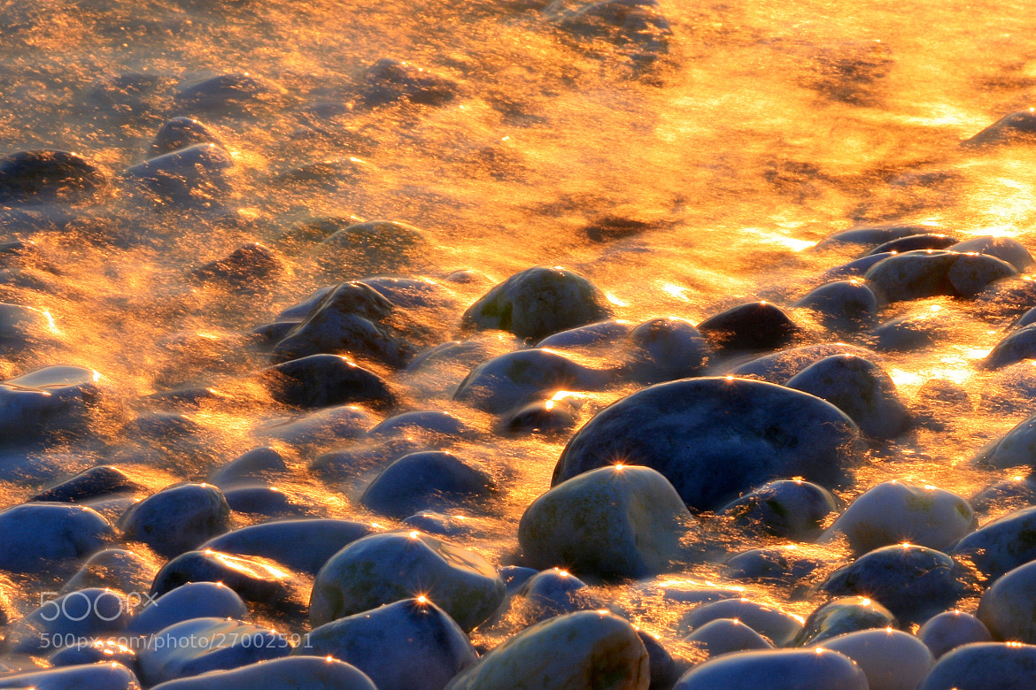 Photograph Diamonds in a sea of gold by Andrea Pucci on 500px