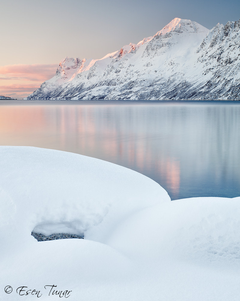 Photograph Ersfjordbotn by Esen Tunar on 500px