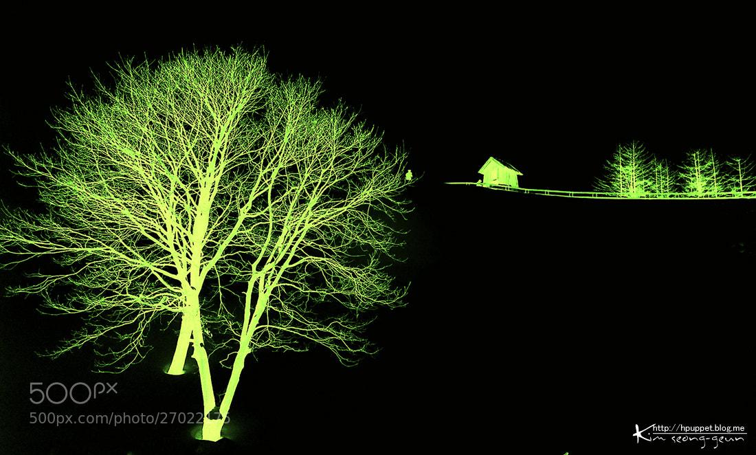 Photograph Pasture by kim seong-geun on 500px