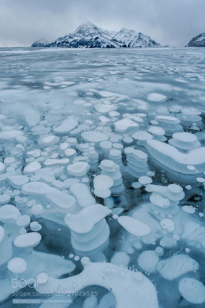 Photograph Abraham ice by Viktoria Haack on 500px
