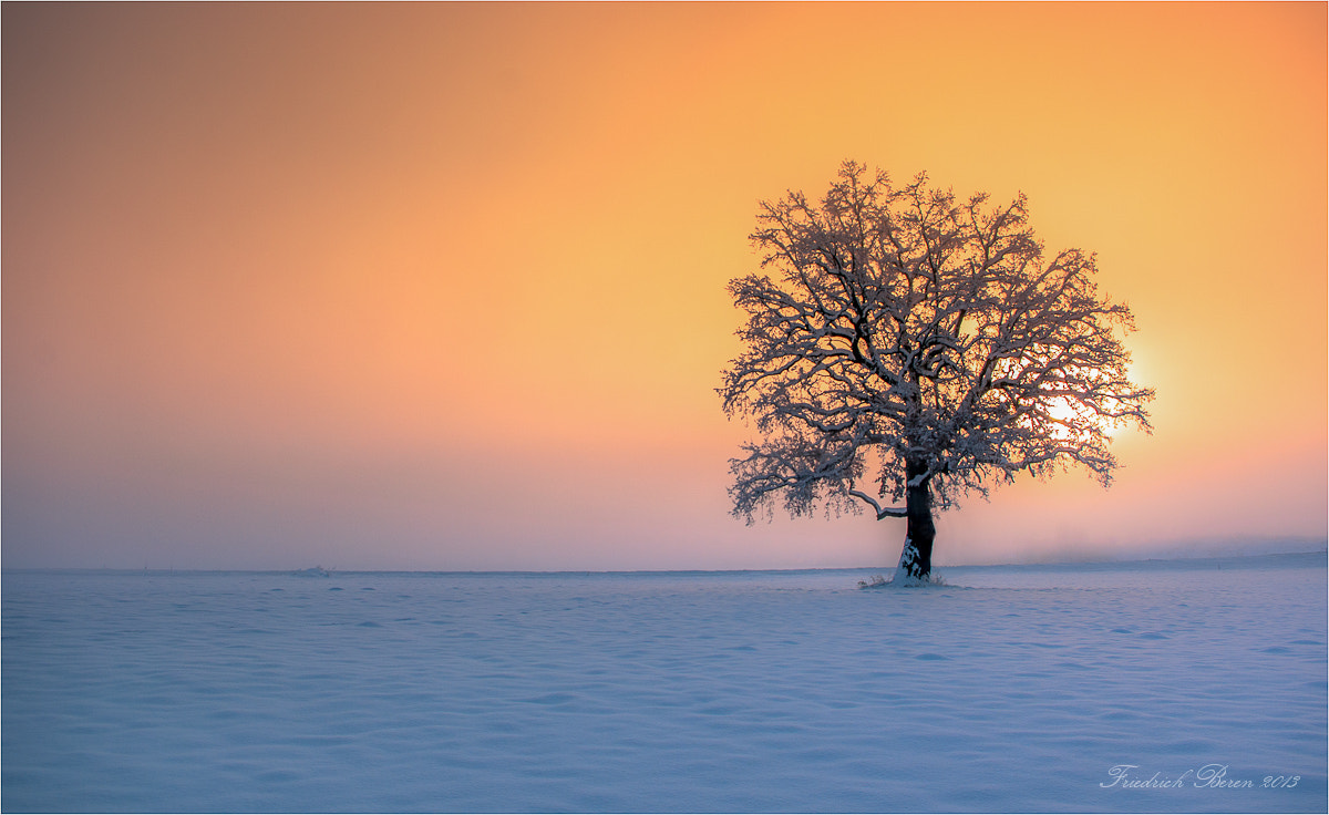Photograph Winterbuche by Friedrich Beren on 500px