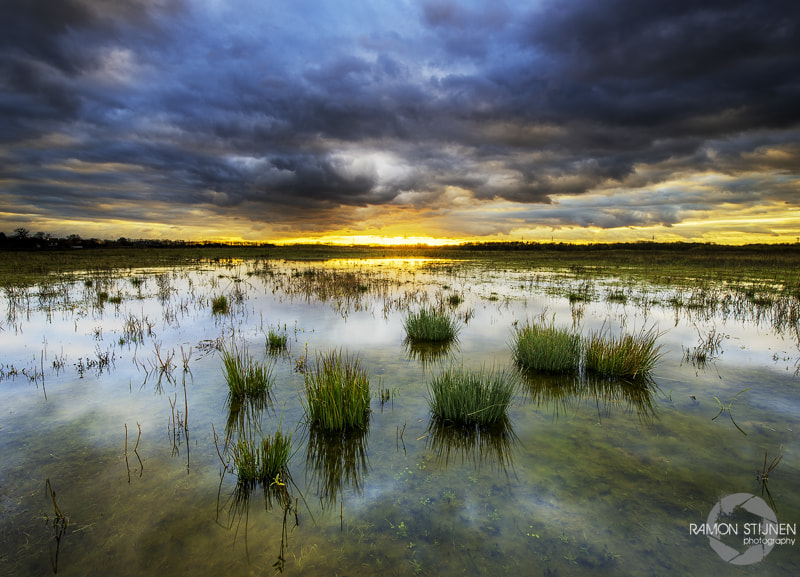 Photograph The Wet Land. by Ramon Stijnen on 500px