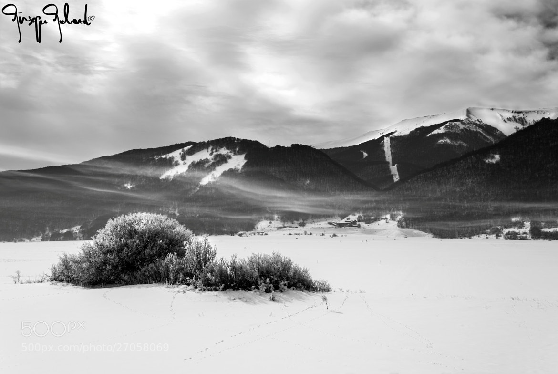 Photograph snow by Giuseppe Galardi on 500px