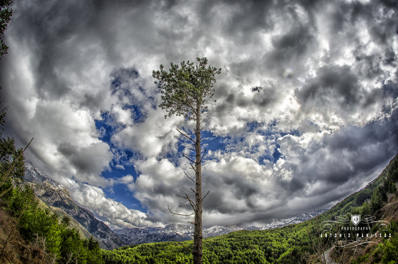 Photograph Sky is the limit by Antonis Panitsas on 500px