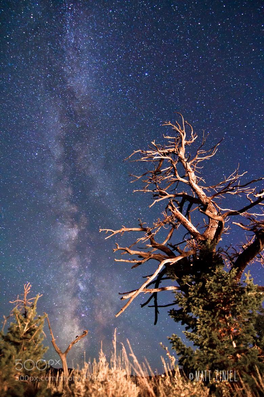 Photograph Wyoming Nights by Matt Ziniel on 500px