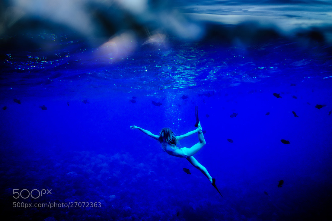 Photograph In the Deep Blue Sea by Daniel Stark on 500px