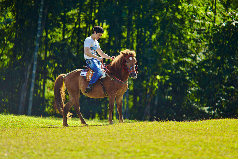 Photograph Horse riding portrait by Yuriy Angel on 500px