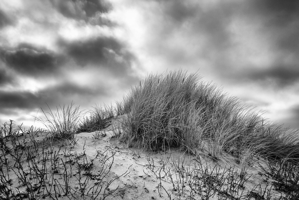 Photograph Kijkduin by Piet Osefius on 500px