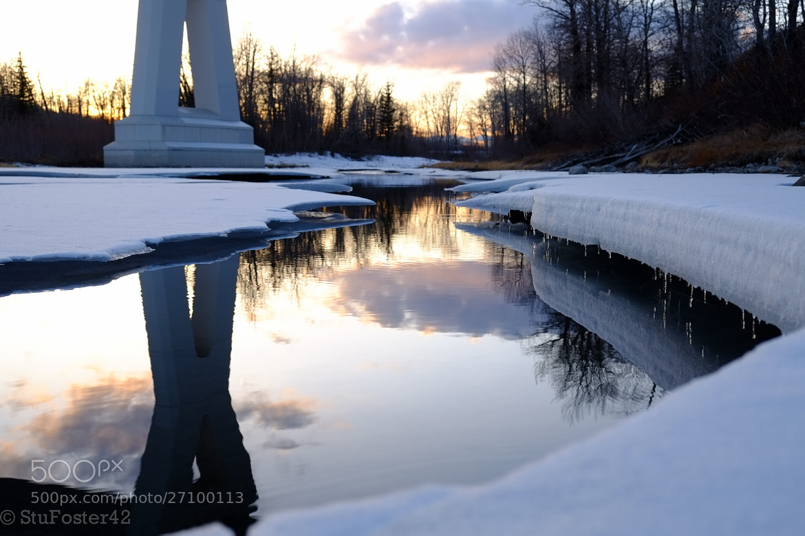 Photograph Little Iceicles by Stuart Foster on 500px