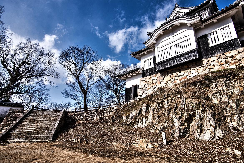 Photograph Mountain Castle HDR by hugh dornan on 500px