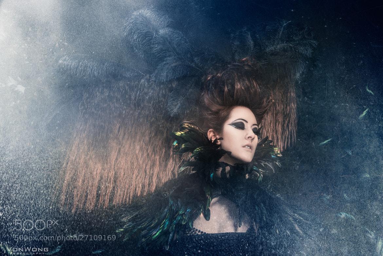 Photograph Black swan by Benjamin Von Wong on 500px