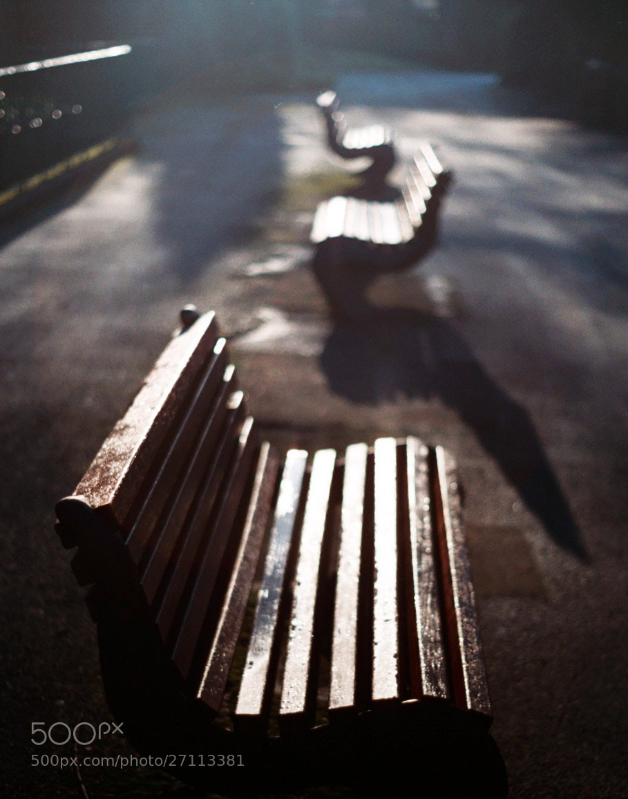 Photograph Benches by Deborah Cardinal on 500px