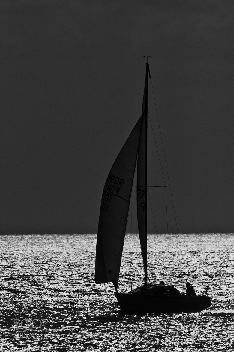 Photograph sailing by Daniel Antunes on 500px