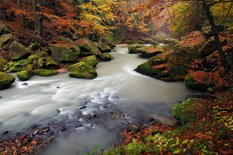 Photograph Fall Colors by Martin Rak on 500px