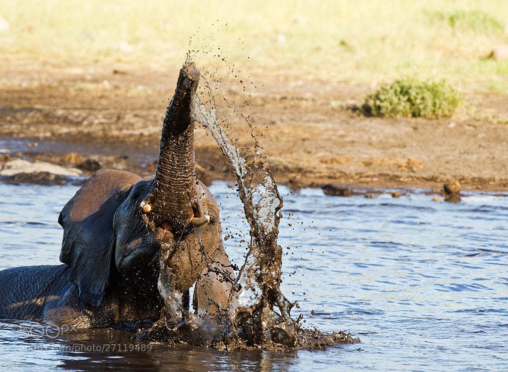 Photograph Water fun by Bridgena Barnard on 500px