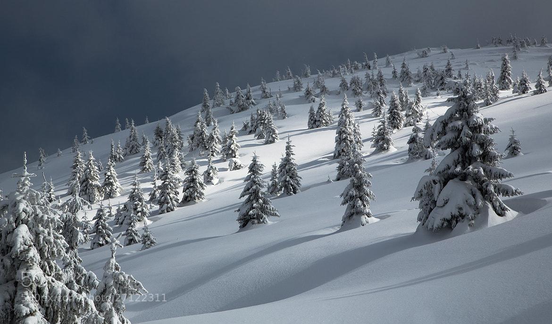 Photograph Untitled by Yuri Ovchinnikov on 500px