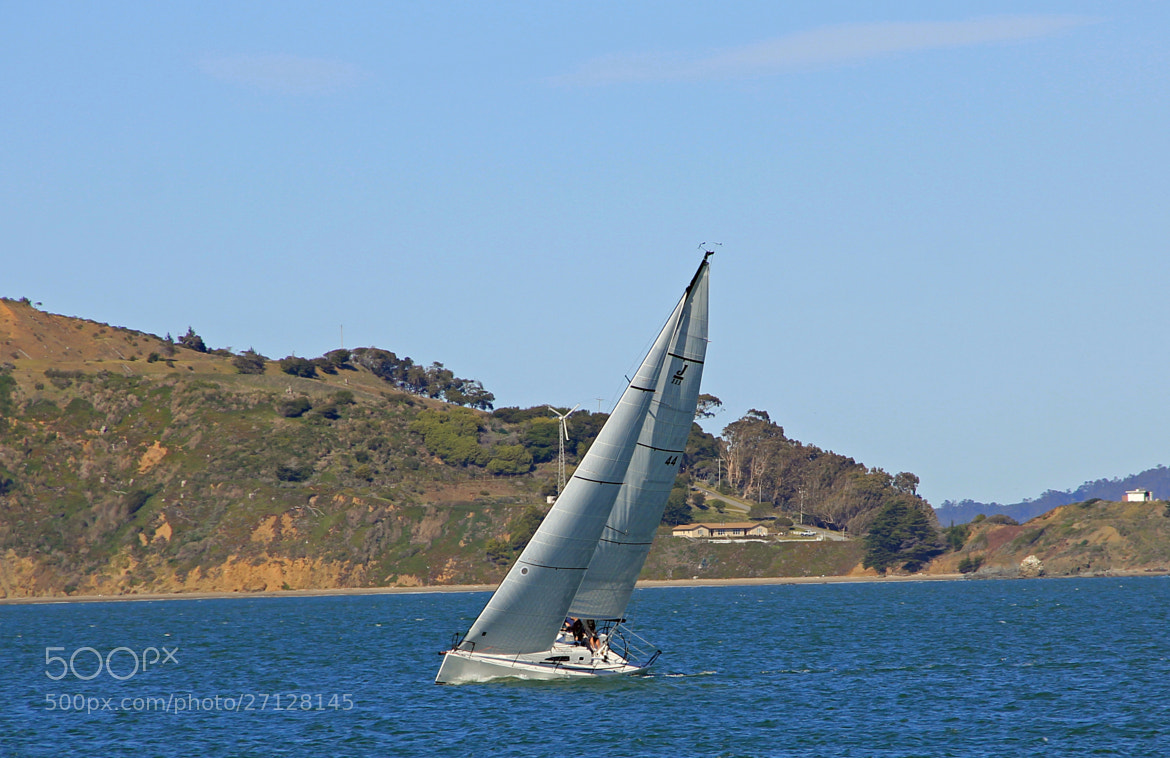 Photograph Sailing by James Roberts on 500px