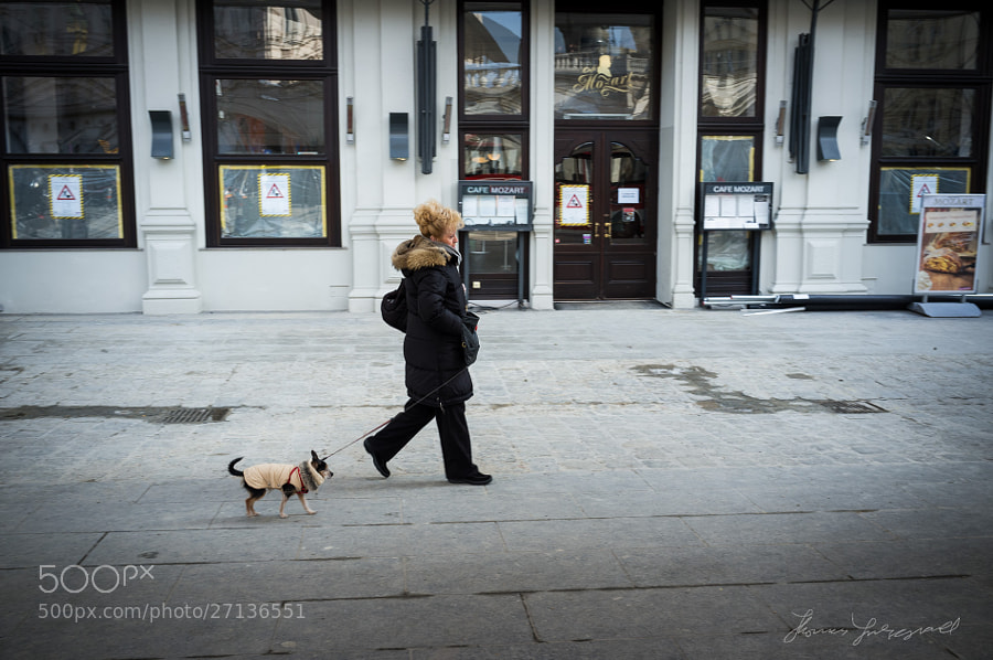 Woman Walking Her Dog,