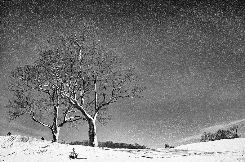 Photograph Winter Wonderland II by ellen  on 500px