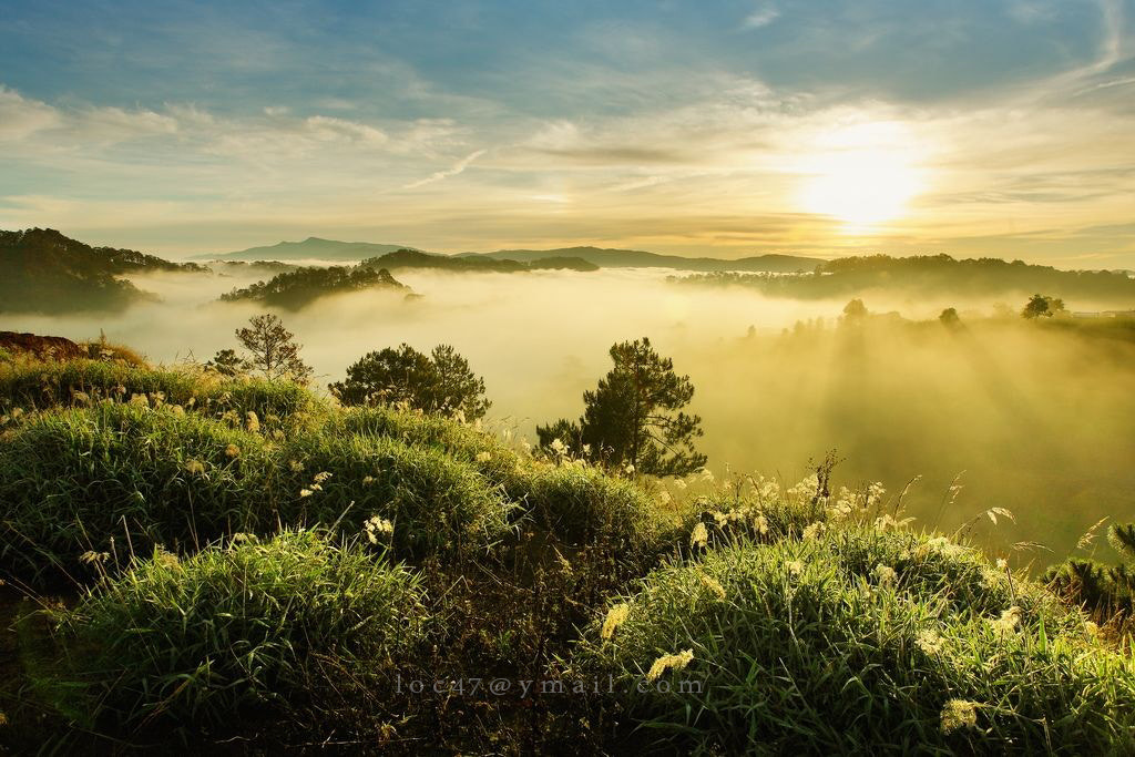 Photograph MIst in the morning  by Nguyen Phuc Loc on 500px