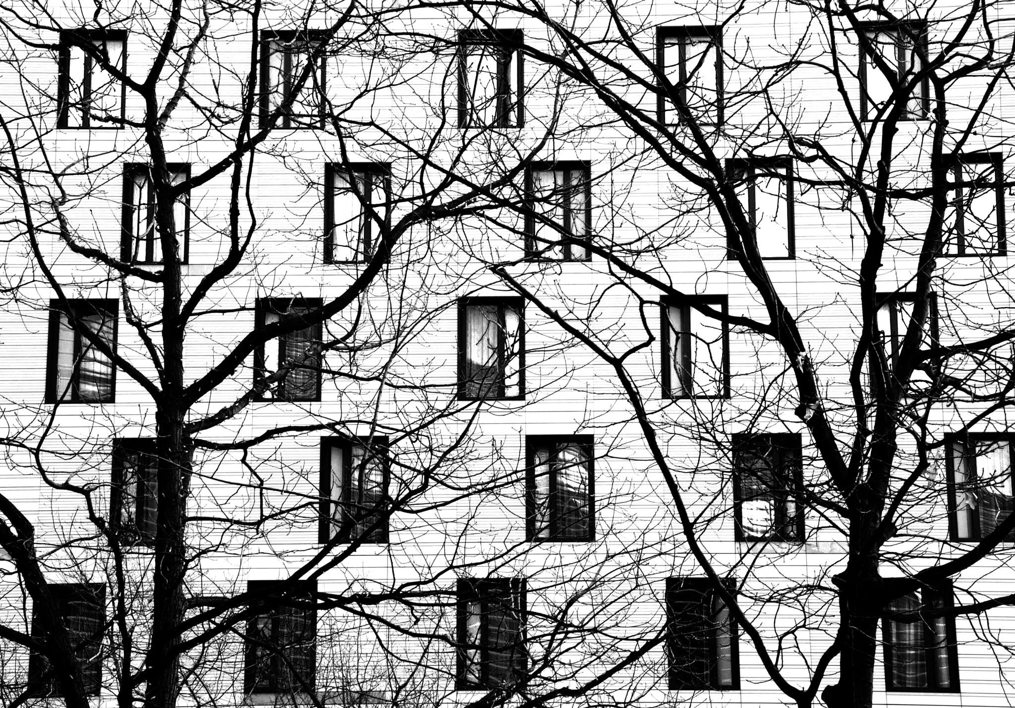 Photograph fuck the symmetry  by M  on 500px