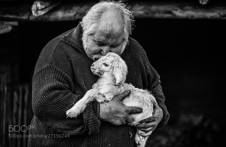 Photograph Untitled by Nikolay Dimitrov on 500px