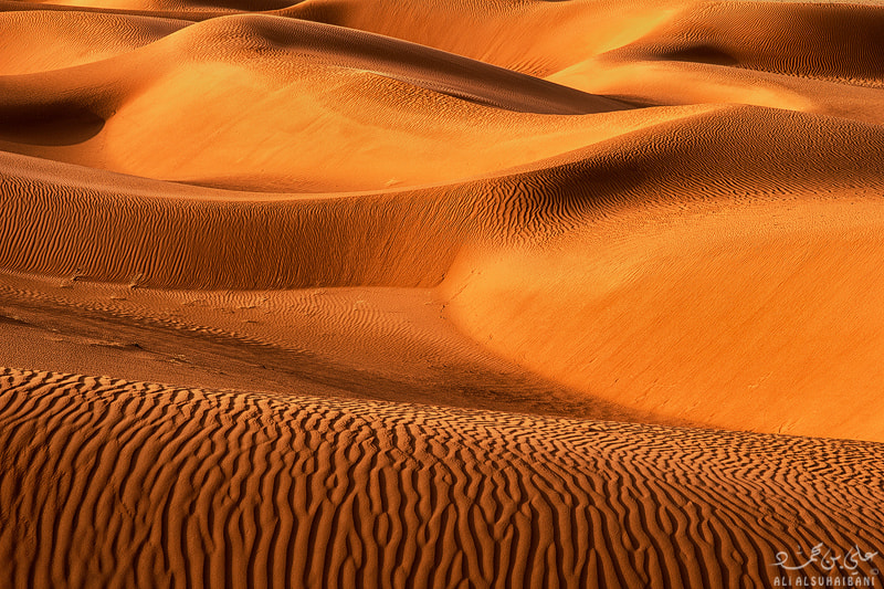 Photograph Goldn Sands by Ali ALSUHAIBANI on 500px
