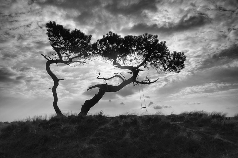 Photograph Clouds over the Tree Swing, Littleferry, Golspie, Sutherland, Scottish Highlands by Heather Leslie Ross on 500px