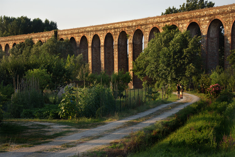 Photograph Road To Lucca Aqueducts by Andew Osterberg on 500px