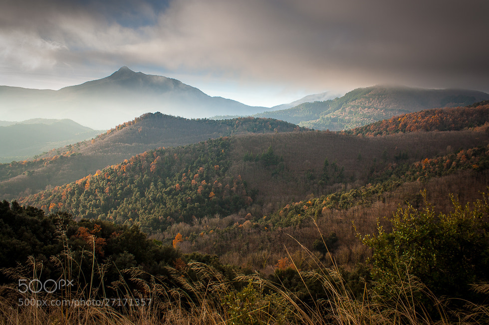 Photograph Catalan Autumn by Peter Pribylinec on 500px