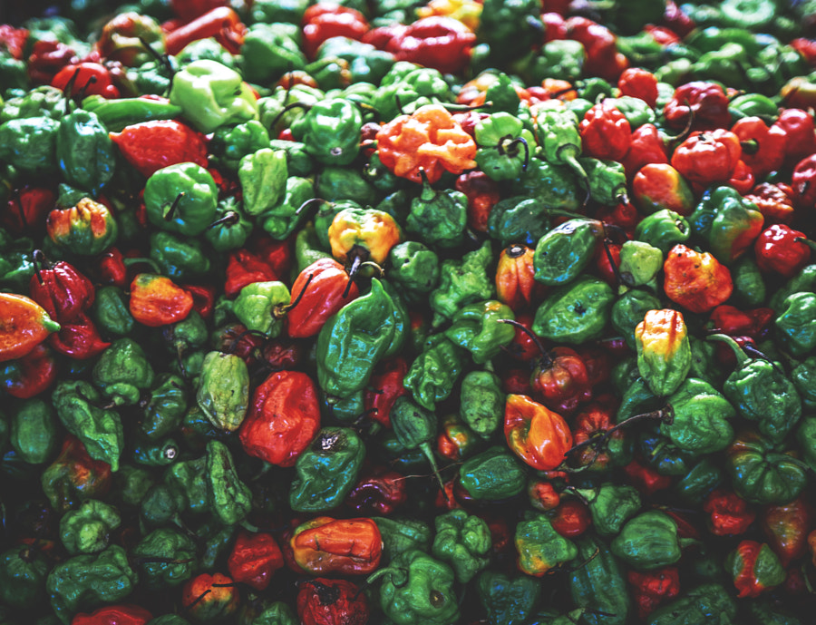 Scotch Bonnet Peppers #2 by Son of the Morning Light on 500px.com