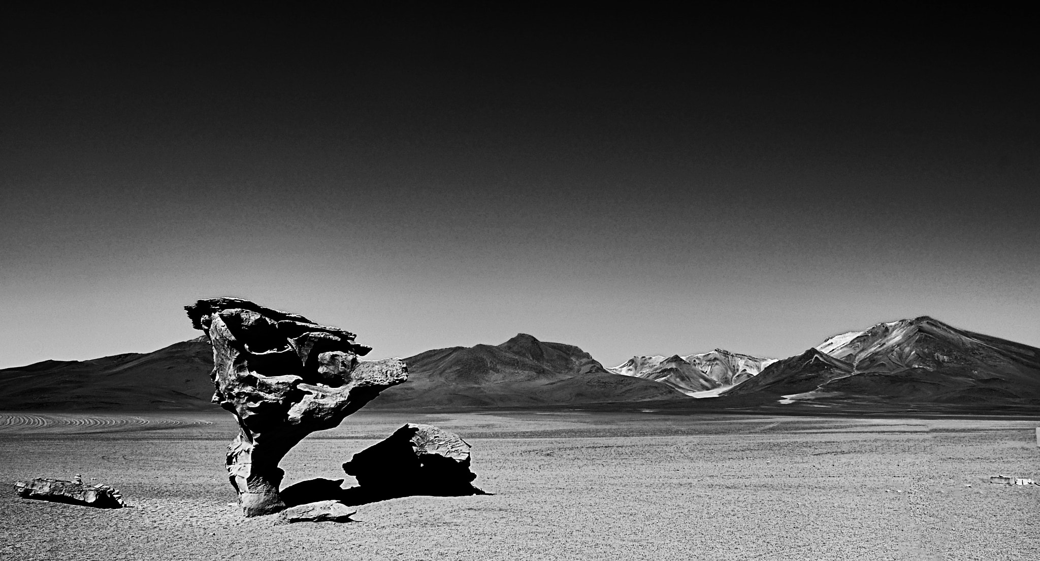 Photograph Stone Tree - Bolivia by shaunfin on 500px