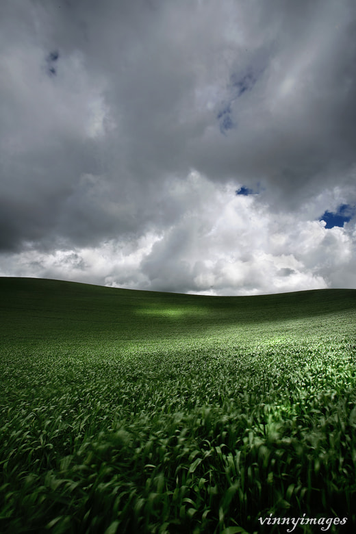 Photograph Rolling Palouse by Vinny Pickens on 500px