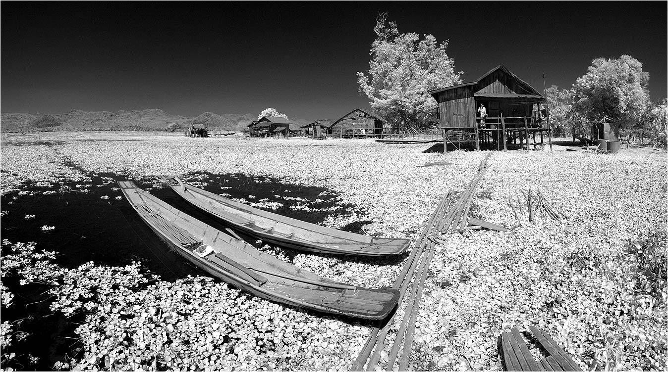 Photograph Myanmar (IR) by Yury Pustovoy on 500px