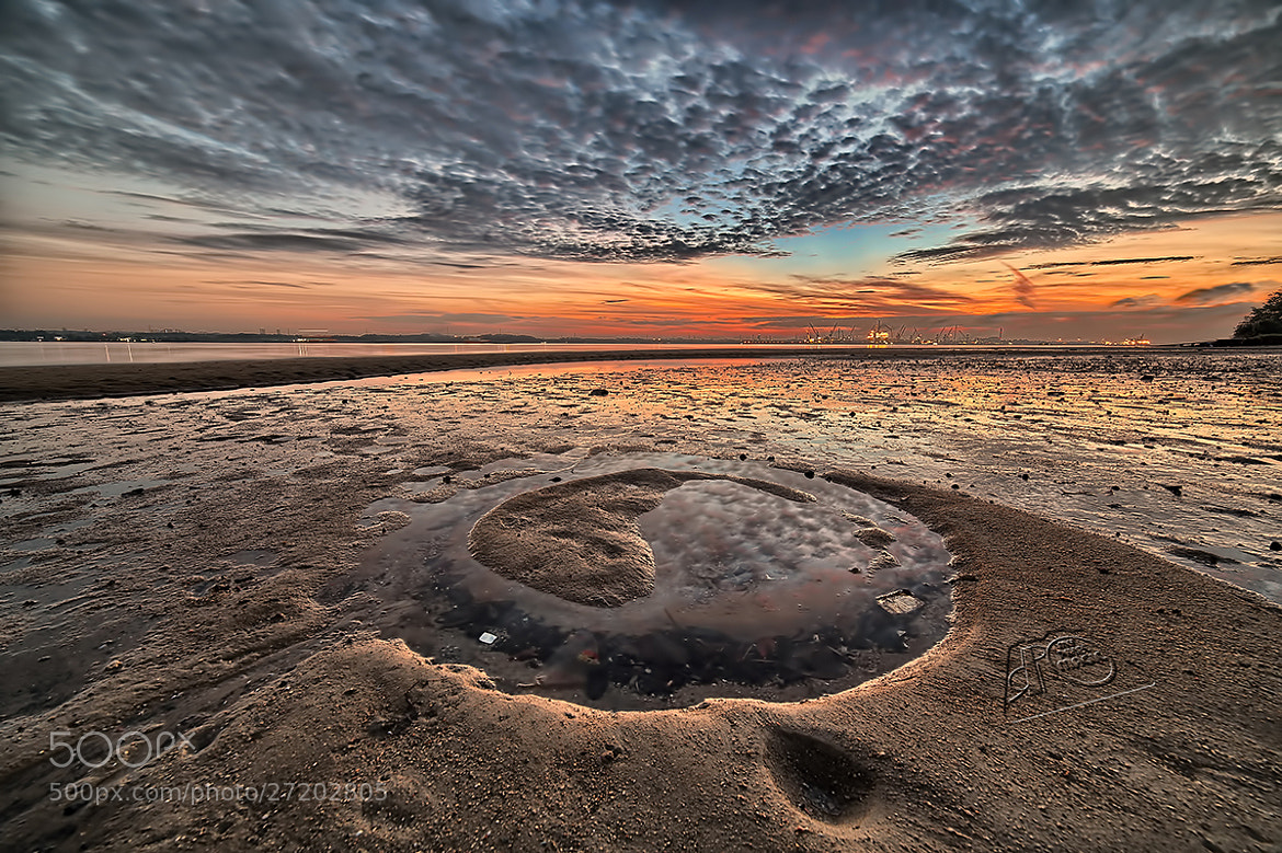 Photograph Yin-Yang by Partha Roy on 500px