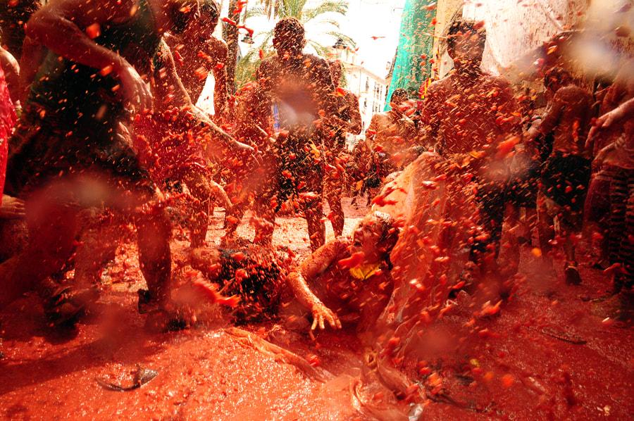 La Tomatina by Simák Gerg? on 500px.com