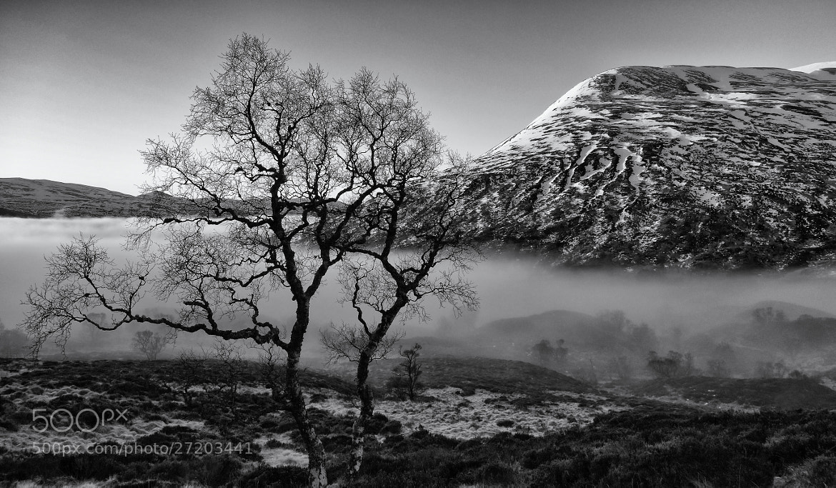 Photograph morning by laggan by ian mcintosh on 500px
